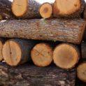 Иззеха незаконни дърва от частен дом в Кулско