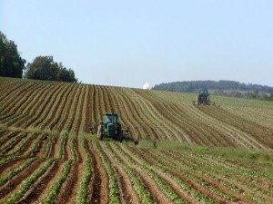 Над 10 млн. евро се отпускат за проекти с иновации в селското стопанство