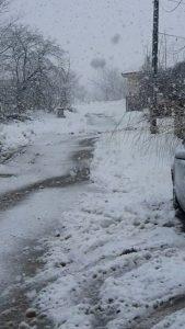 Обилен снеговалеж в Ново село(Снимки)