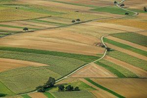 Регистрираните земеделски производители, чиито площи са пострадали от проливните дъждове, могат да подадат заявление за обследване