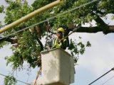 Работник падна от автовишка във Видин и почина