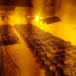 Разкриха голяма нарколаборатория в Бойчиновци, няма задържани към момента (СНИМКИ)
